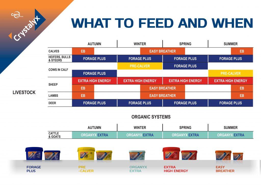 Crystalyx Feeding Guide